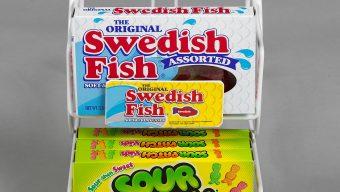 SWEDISH_FISH_1
